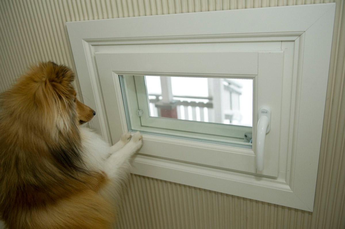 Ikkunaremontti Heinavesi uudet tuuletusikkunat valkoiset ikkunapuitteet.jpg